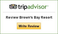 TripAdvisor, logo